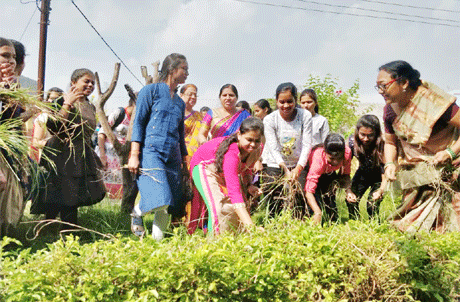 भिलाई। भिलाई महिला महाविद्यालय में 26 सितम्बर से 2 अक्टूबर तक नई तालीम सप्ताह का आयोजन किया गया। महात्मा गांधी की 150वीं वर्षगांठ पर उनके आदर्शों को नई पीढ़ी तक पहुंचाने के लिए मानव संसाधन विकास मंत्रालय ने इस सप्ताह के आयोजन का निर्देश दिया था। कार्यक्रम के तहत विद्यार्थियों ने खरपतवार साफ किए, पौधरोपण किया तथा एक गांव का दौरा कर कृषि संबंधी जानकारी एवं अनुभव प्राप्त किया।