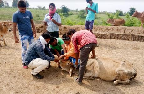 Roka Chheka drive in Chhattisgarh