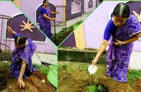 Tree Plantation Collage from Patankar Girls College