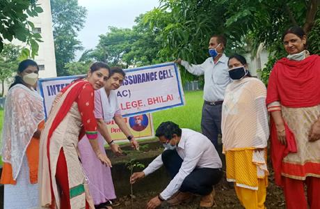 Tree Plantation at MJ College