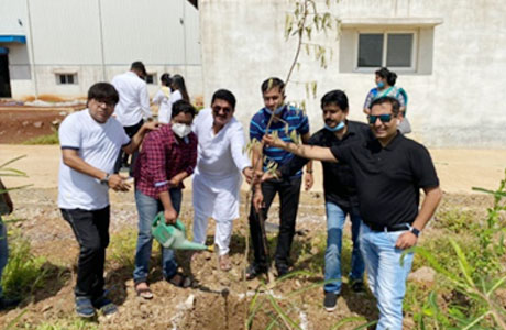 Tree plantation by MSSCT
