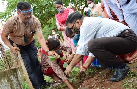 Tree plantation week at Durg Science College