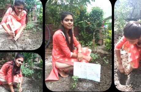 Tree Plantation Collage