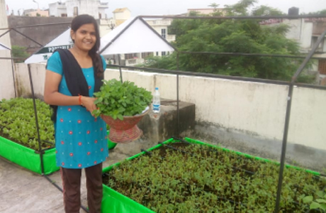 Roof Top Farming