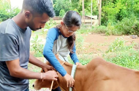 Animal saver group Bhilai