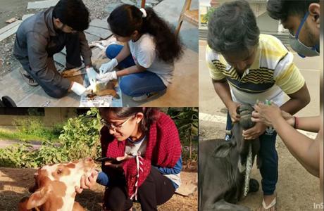 Animal Savers Bhilai