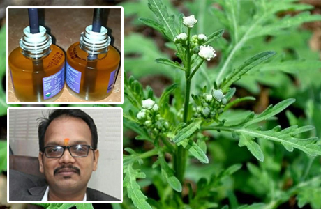 RCPSR scientist come up with herbal mosquito repellant
