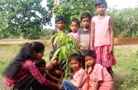 शंकराचार्य कॉलेज के बच्चों ने अपने-अपने घर लगाए पौधे