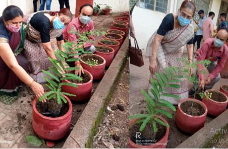 स्वरूपानंद कॉलेज में लगाये छायादार एवं फलदार पौधे